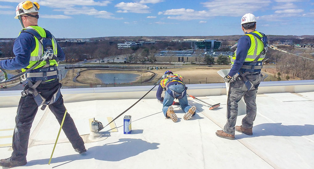 basics of fall protection for working at height