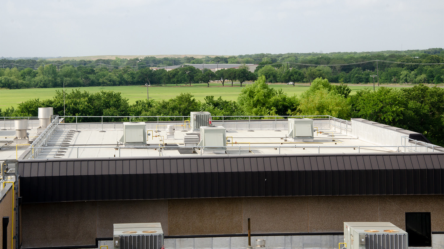 Rooftop Safety Systems Designed for Your Food Processing Facility